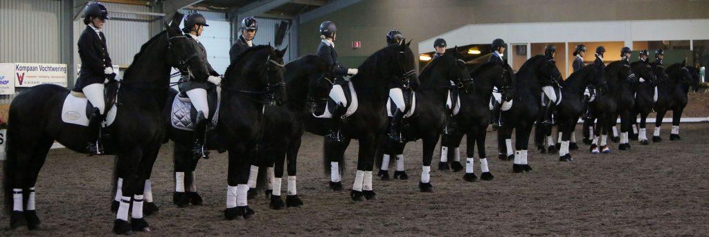 درباره اسب های فریزین