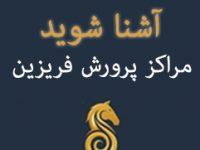 مراکز پرورش اسب فریزین در ایران